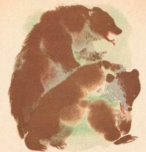 Bears vintage